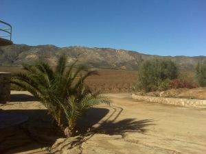 Mexico's Napa Valley